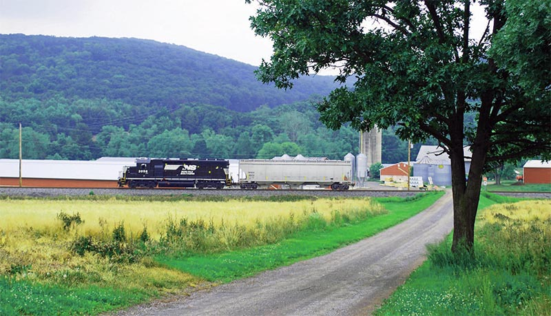 Norfolk Southern's Selingrove Industrial: A Lonely Branch